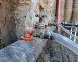 Wellpoint flexbow valve